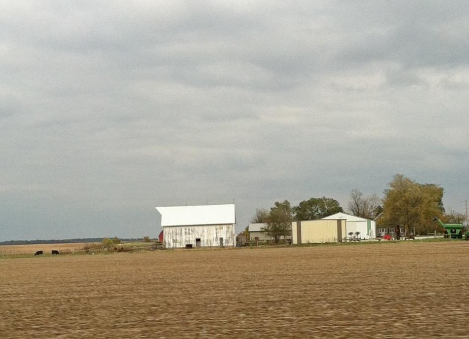 20121016-213721.jpg
